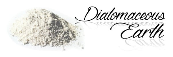 diatomaceous-earth-new-product